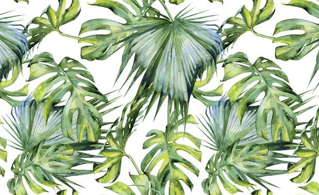 Catálogo Botanica I