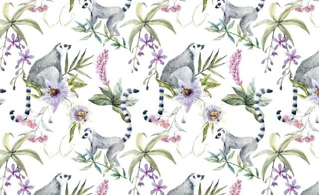 Catálogo Botanica Wild I