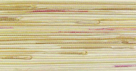 10411041 (Rafia Bulrush DZ 871)