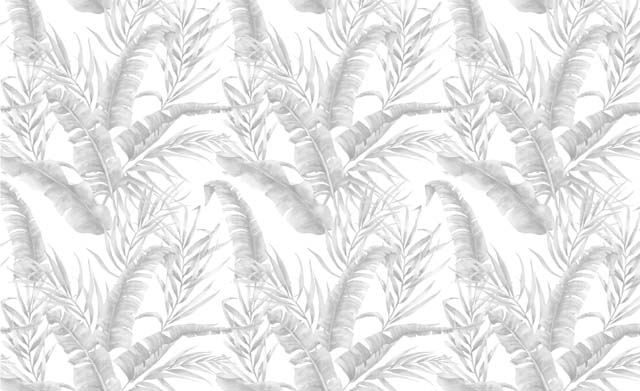 Catálogo Botánica VI